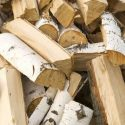 Keep These Things in Mind When Choosing and Storing Firewood
